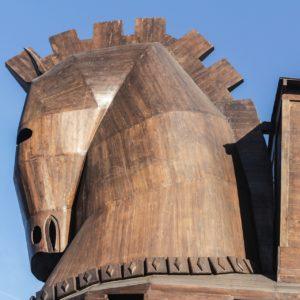 Cavallo di troia 300x300 - Donna Cristina